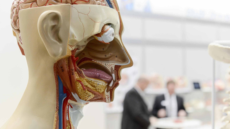 medica 2014/ Stand: Erler Zimmer